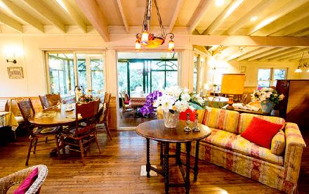 アリスの茶屋|ホームページ制作|アースリーラフ