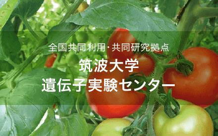 筑波大学遺伝子実験センター|ホームページ制作・ロゴ|アースリーラフ