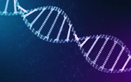 ゲノム編集育種を考えるネットワーク|ホームページ制作|アースリーラフ